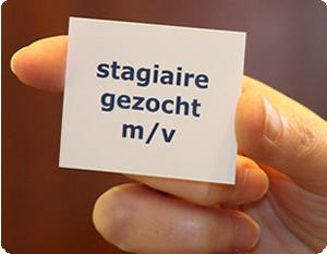 Stagiaires Gezocht